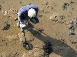 История археологии
