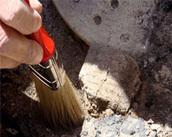 Древний храм чжурчжэней обнаружен в Приморье